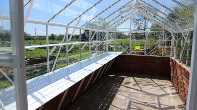 Greenhouse Spring Clean