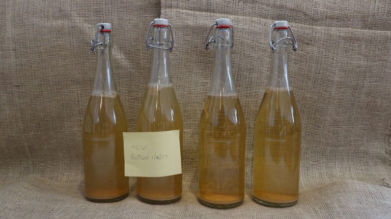 home-made-apple-cider-vinegar-bottled